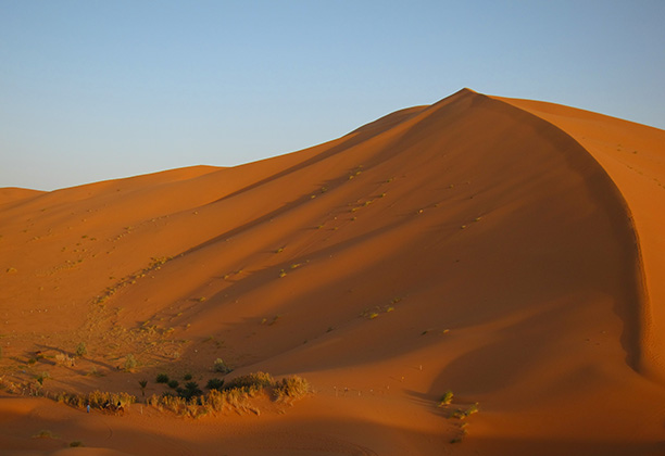 Erg Chebbi dunes. Photograph by Cynthia Becker, 2010
