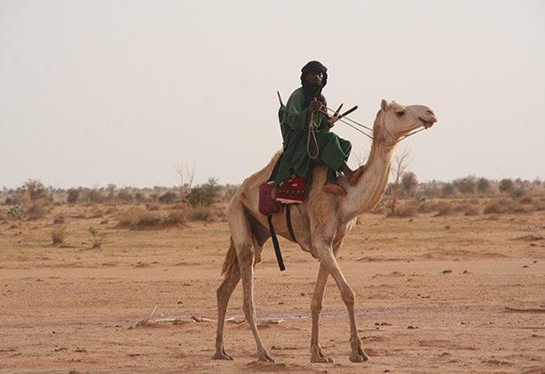 A man rides his camel to market in the Agadez region of central Niger